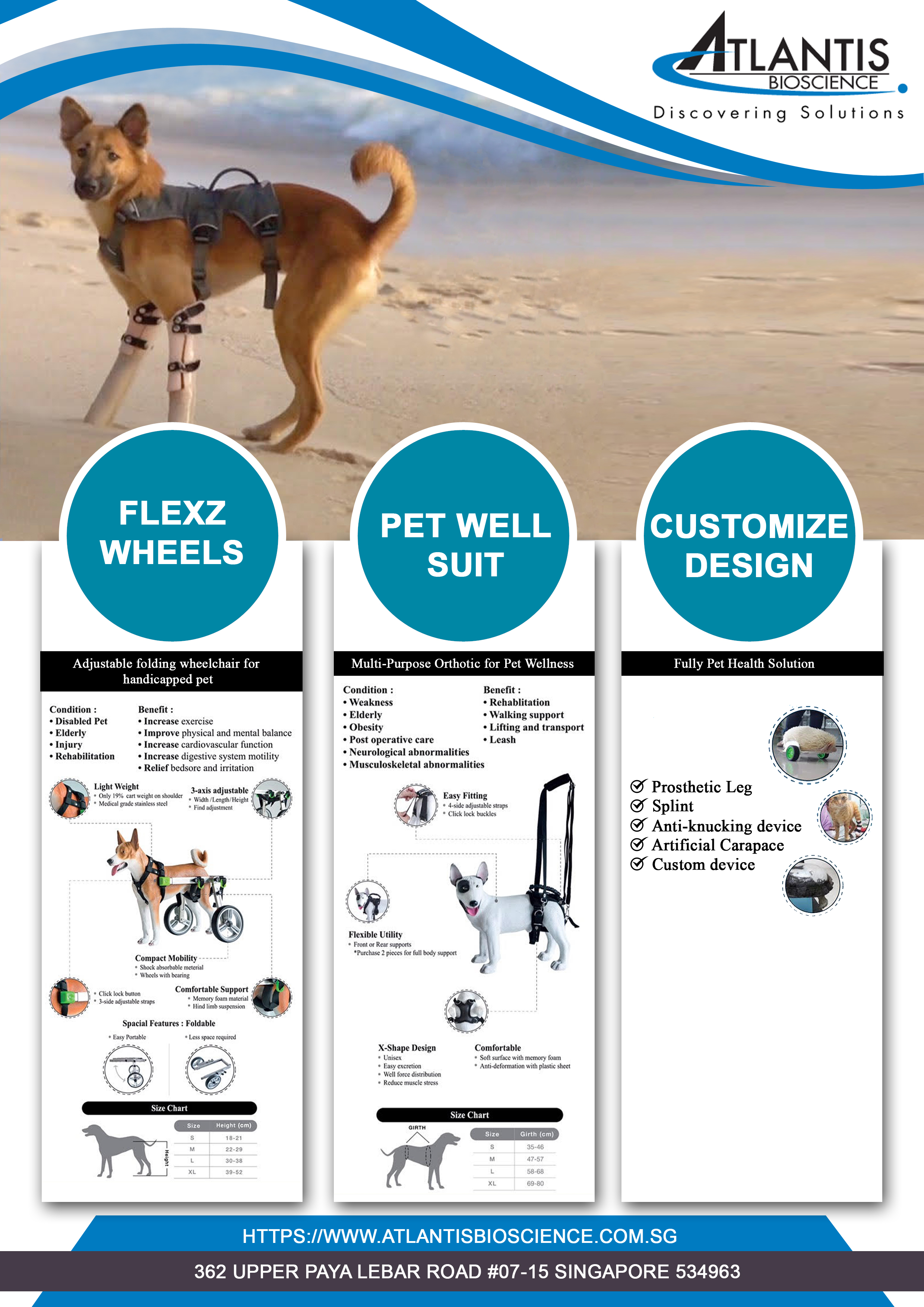 Nov'18-Hydrotherapy & Orthopaedic  products for veterinary use