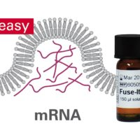 fuse-it-mrna-easy