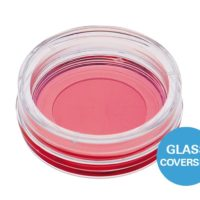 glass-bottom-dish-35-mm[1]