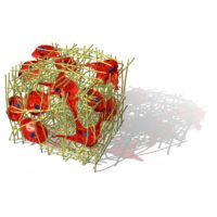 3d-fect-3d-scaffolds-transfection-reagent4