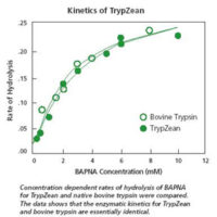 kinetics-of-trypzean[1]