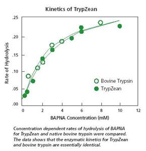 kinetics-of-trypzean[1]