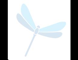 dragon-fly-290_copy_e65e2305-ebc2-4996-bbda-64d21f3a42dc1.png