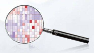 Biomarker Assay Services